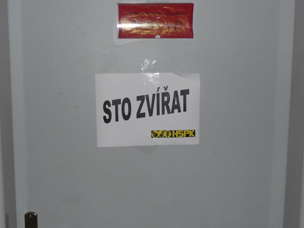 Košice - Hala Cassosport, 17.02.2012