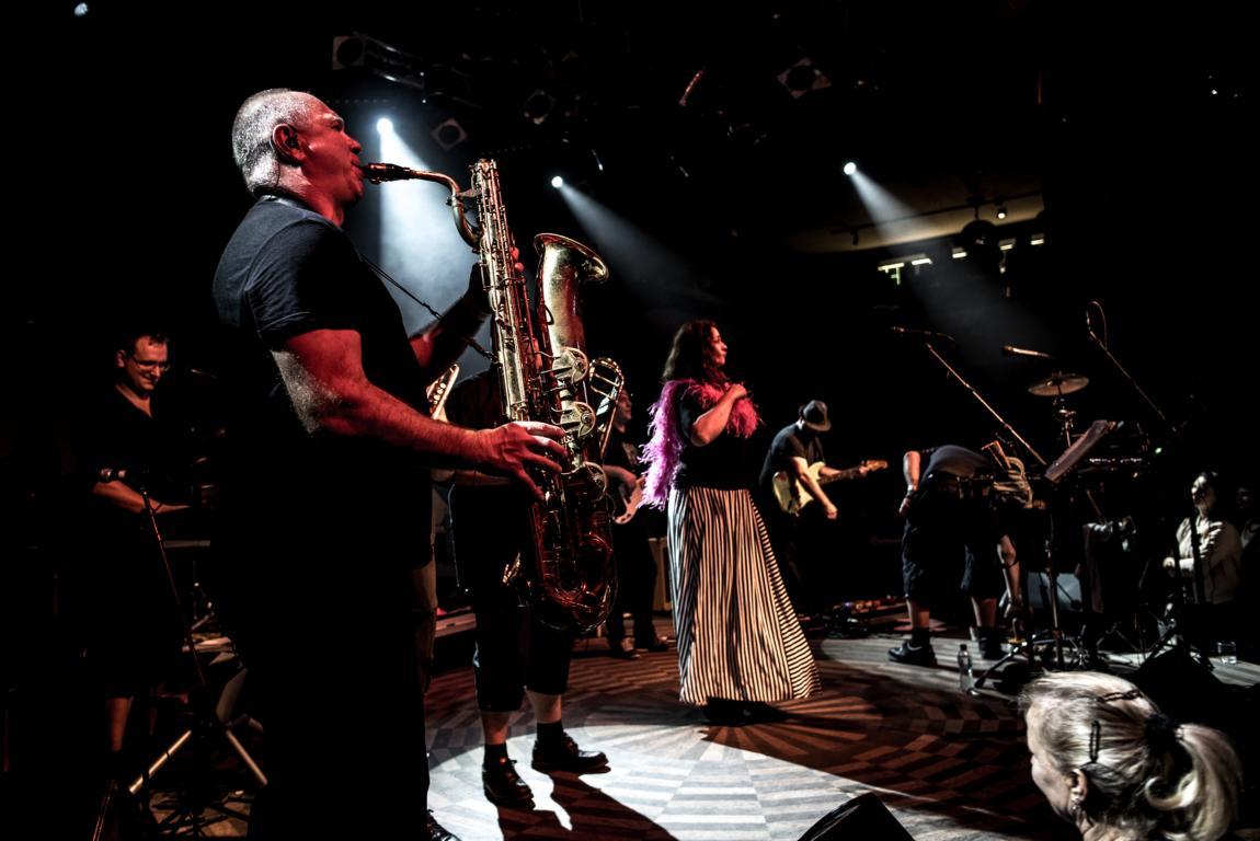Praha - Lucerna music bar 8.11.2017 (Dáma s čápem tour)